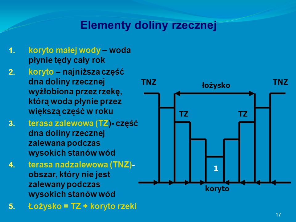 Elementy doliny rzecznej