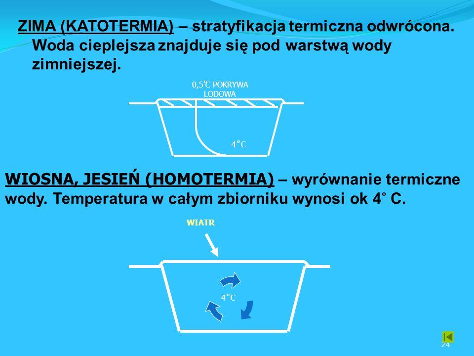 ZIMA (KATOTERMIA) – stratyfikacja termiczna odwrócona