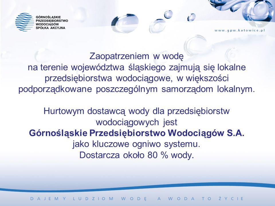 Zaopatrzeniem w wodę na terenie województwa śląskiego zajmują się lokalne przedsiębiorstwa wodociągowe, w większości podporządkowane poszczególnym samorządom lokalnym.