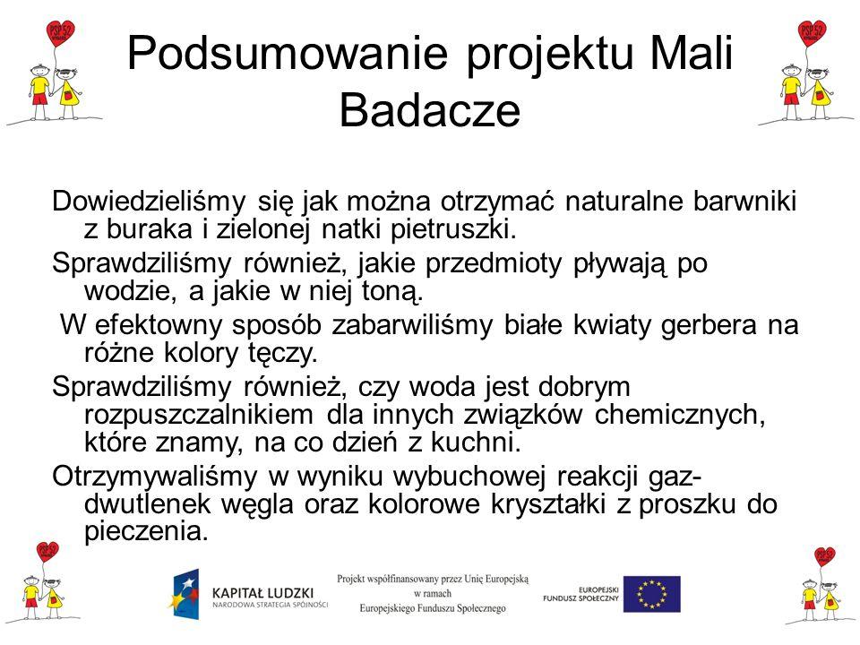 Podsumowanie projektu Mali Badacze