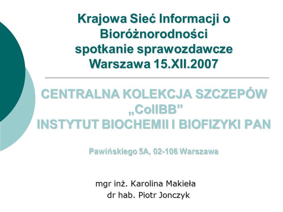 mgr inż. Karolina Makieła dr hab. Piotr Jonczyk