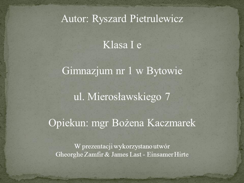 Autor: Ryszard Pietrulewicz Klasa I e Gimnazjum nr 1 w Bytowie