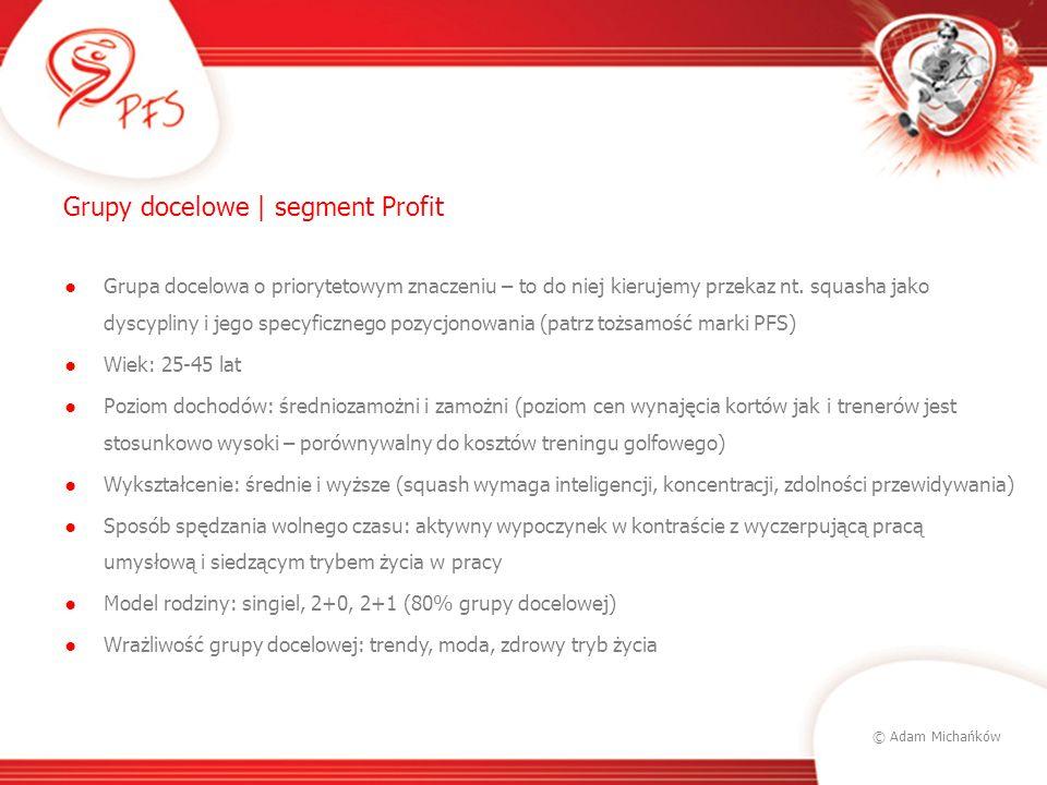 Grupy docelowe | segment Profit