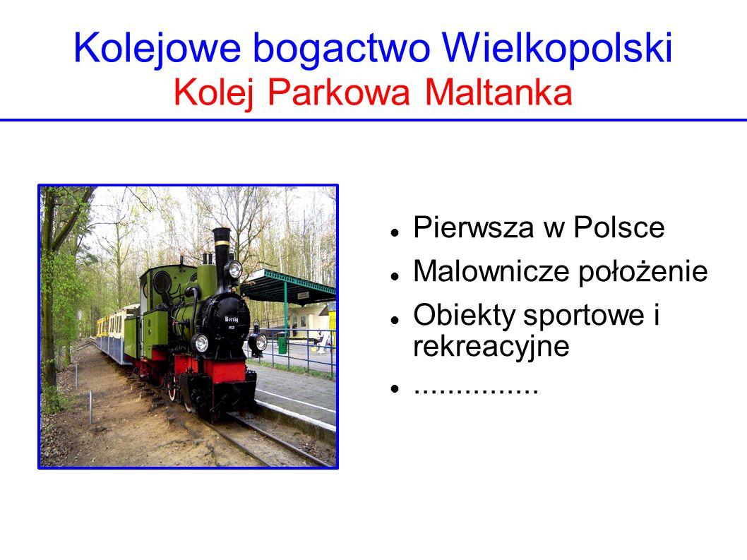 Kolejowe bogactwo Wielkopolski Kolej Parkowa Maltanka