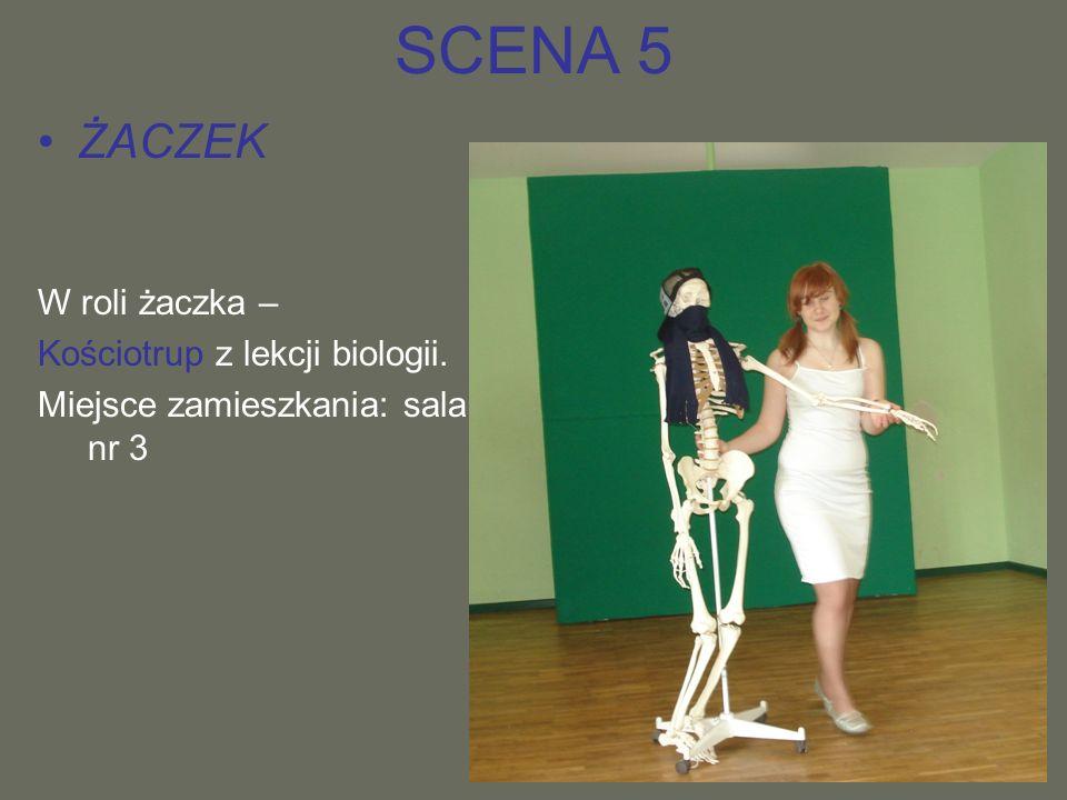 SCENA 5 ŻACZEK W roli żaczka – Kościotrup z lekcji biologii.
