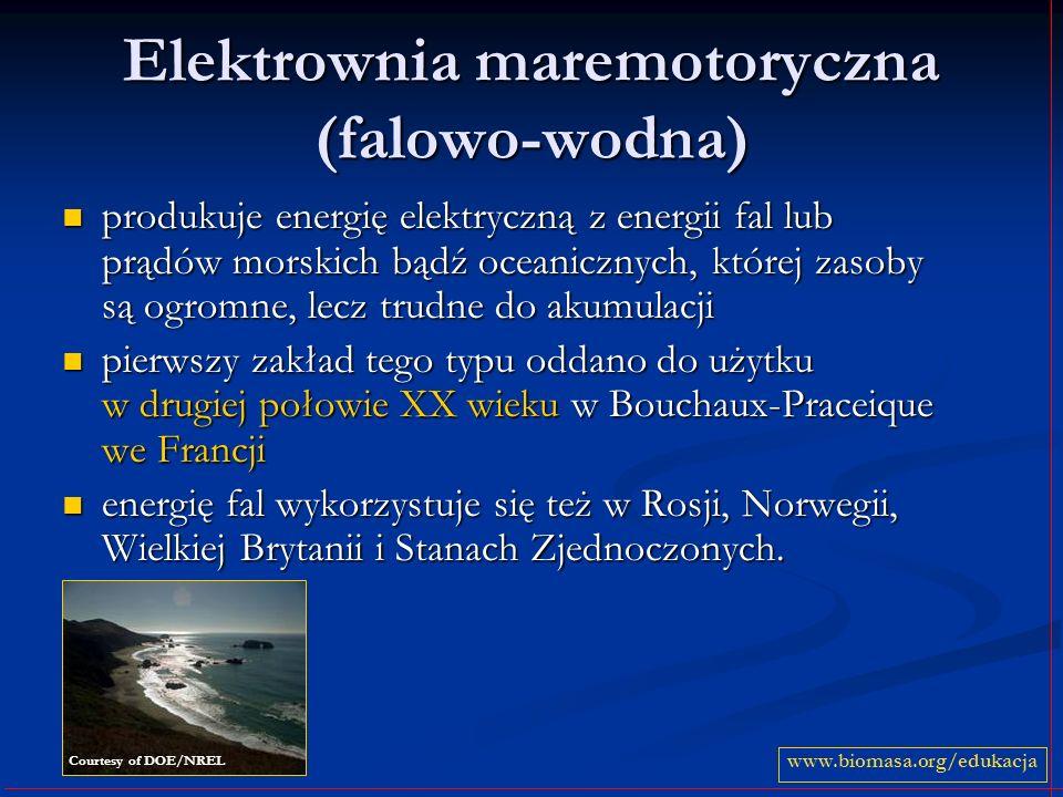Elektrownia maremotoryczna (falowo-wodna)
