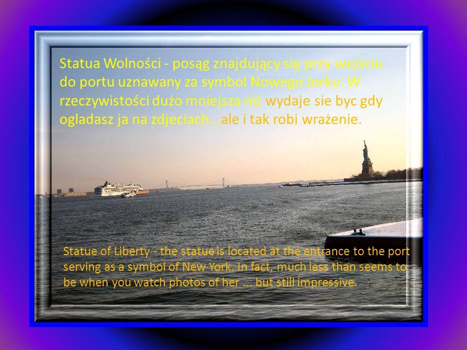 Statua Wolności - posąg znajdujący się przy wejściu do portu uznawany za symbol Nowego Jorku. W rzeczywistości dużo mniejsza niż wydaje sie byc gdy ogladasz ja na zdjeciach...ale i tak robi wrażenie.