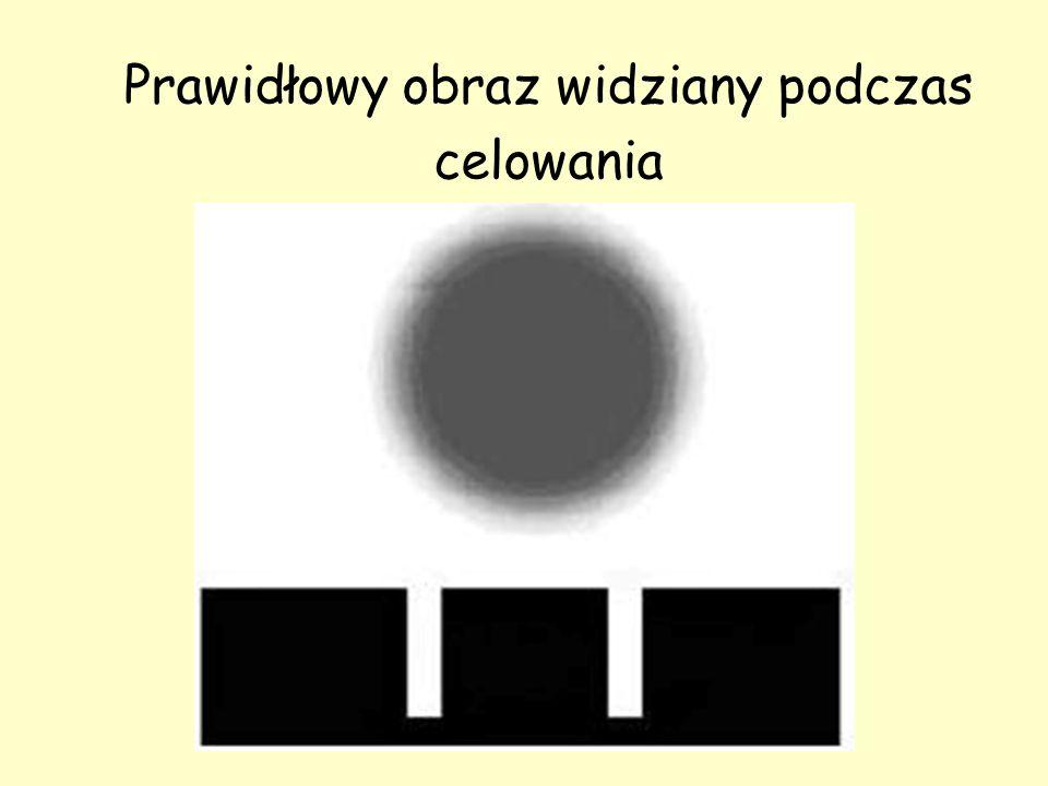 Prawidłowy obraz widziany podczas celowania