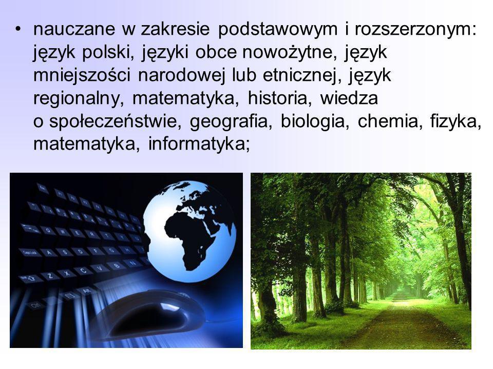 nauczane w zakresie podstawowym i rozszerzonym: język polski, języki obce nowożytne, język mniejszości narodowej lub etnicznej, język regionalny, matematyka, historia, wiedza o społeczeństwie, geografia, biologia, chemia, fizyka, matematyka, informatyka;