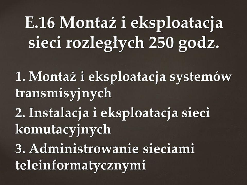 E.16 Montaż i eksploatacja sieci rozległych 250 godz.