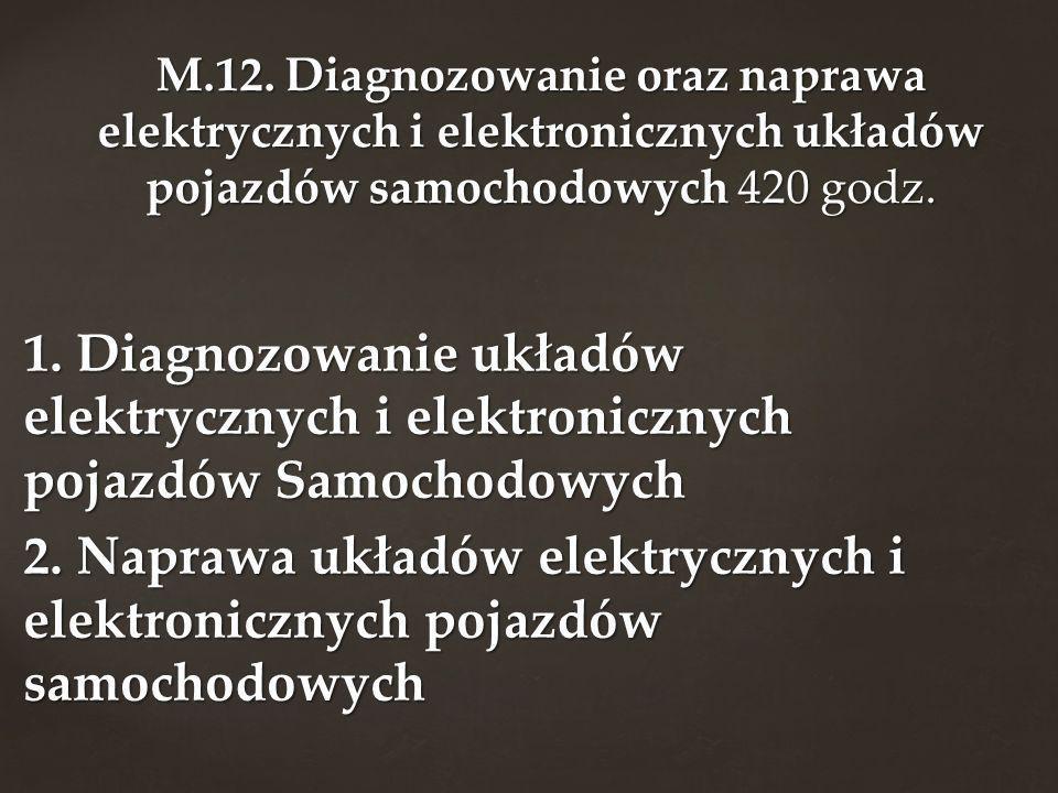 M.12. Diagnozowanie oraz naprawa elektrycznych i elektronicznych układów pojazdów samochodowych 420 godz.