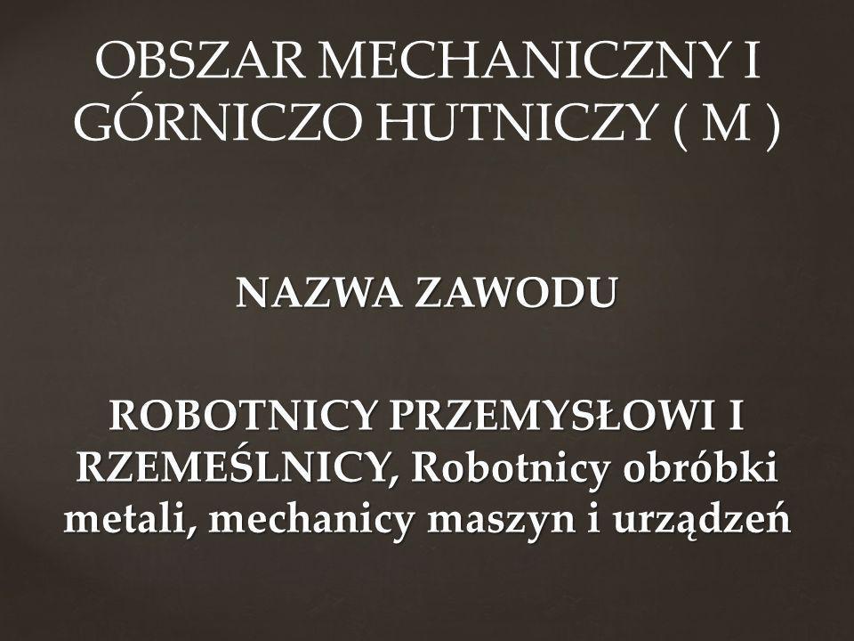 OBSZAR MECHANICZNY I GÓRNICZO HUTNICZY ( M )