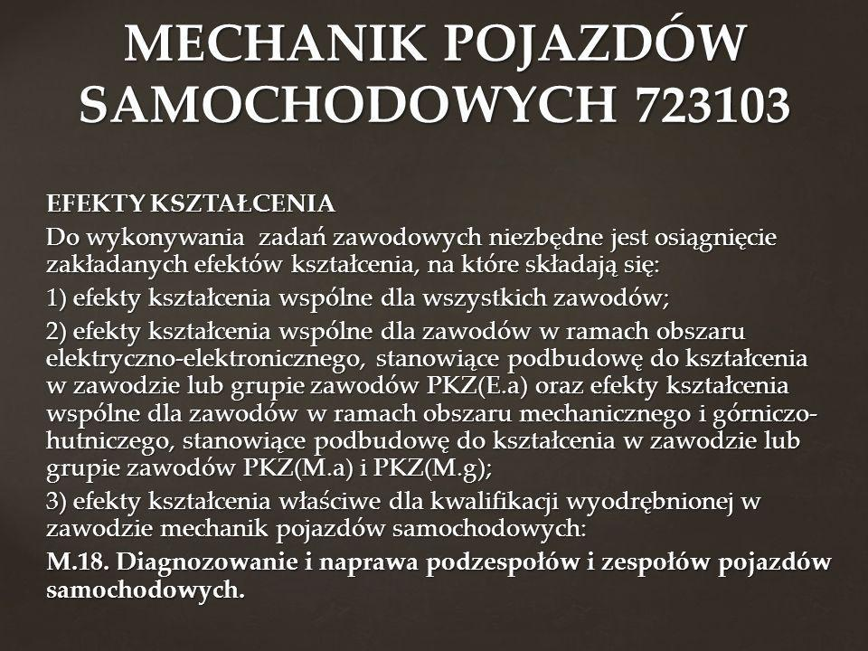 MECHANIK POJAZDÓW SAMOCHODOWYCH 723103