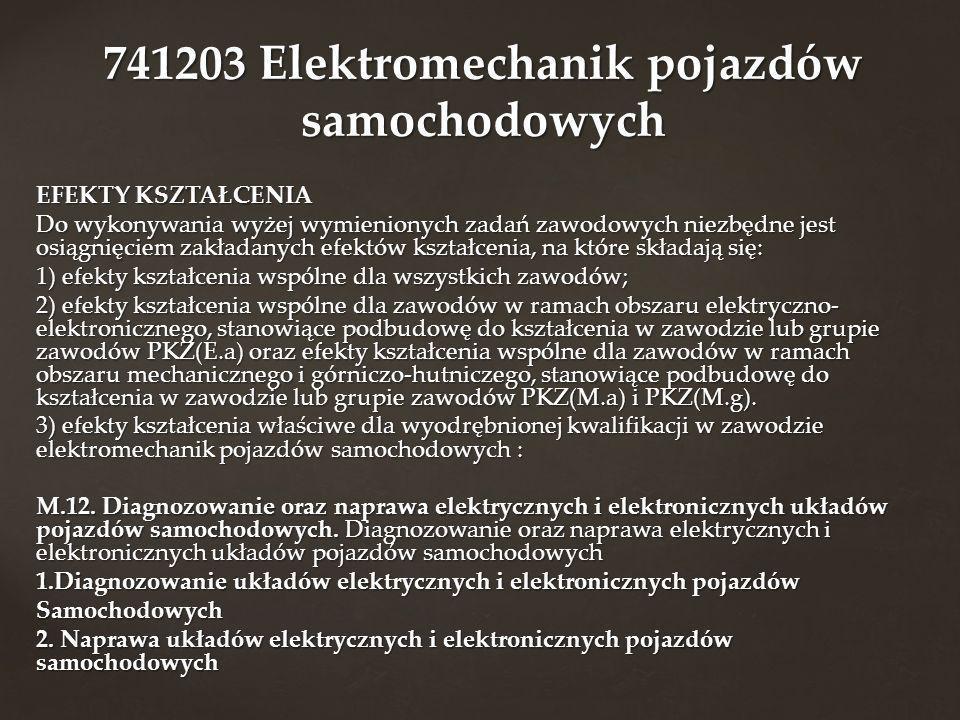 741203 Elektromechanik pojazdów samochodowych