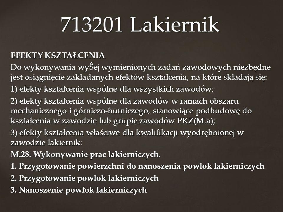 713201 Lakiernik