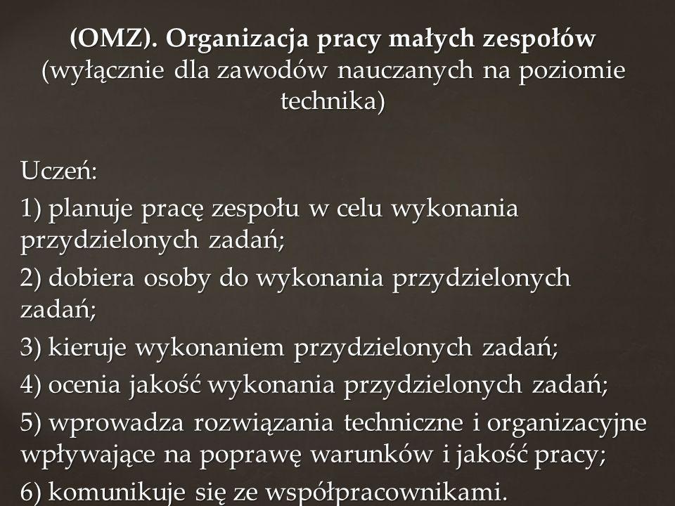 (OMZ). Organizacja pracy małych zespołów (wyłącznie dla zawodów nauczanych na poziomie technika)