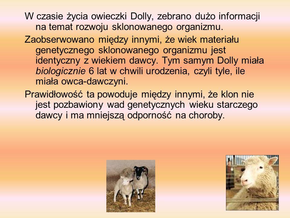 W czasie życia owieczki Dolly, zebrano dużo informacji na temat rozwoju sklonowanego organizmu.