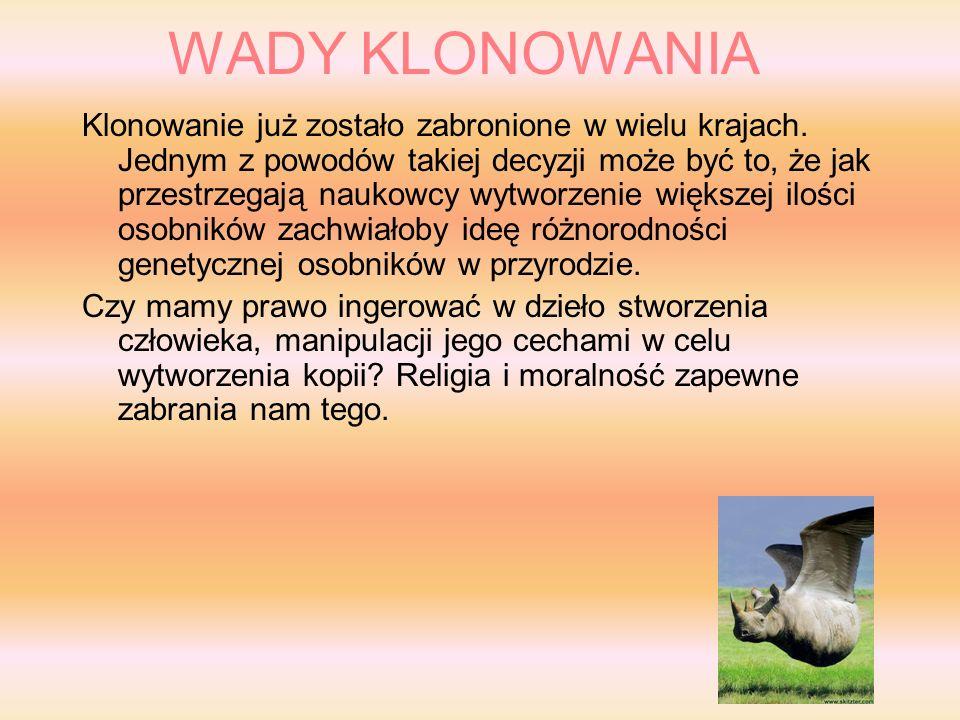WADY KLONOWANIA