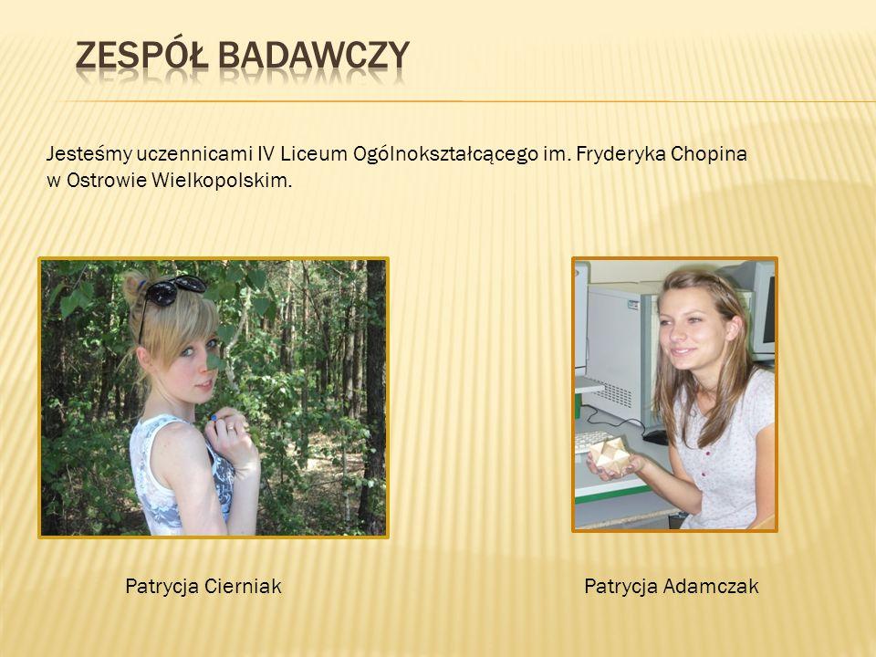 Zespół badawczy Jesteśmy uczennicami IV Liceum Ogólnokształcącego im. Fryderyka Chopina w Ostrowie Wielkopolskim.