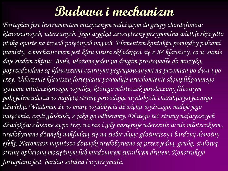 Budowa i mechanizm