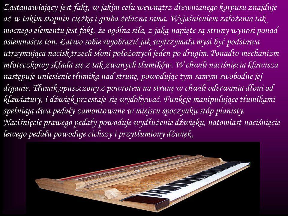 Zastanawiający jest fakt, w jakim celu wewnątrz drewnianego korpusu znajduje aż w takim stopniu ciężka i gruba żelazna rama.