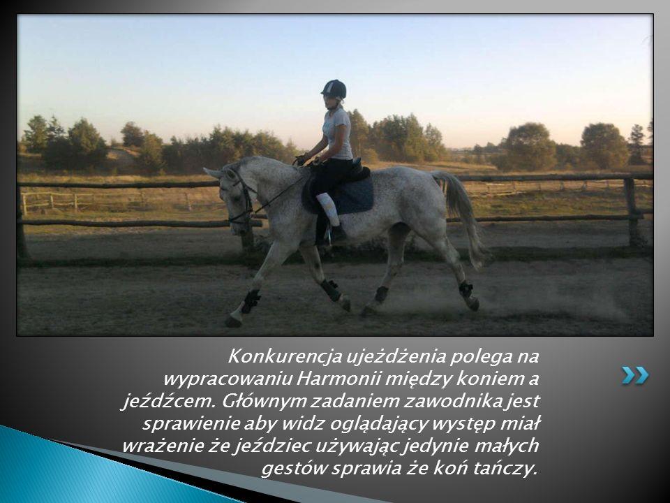 Konkurencja ujeżdżenia polega na wypracowaniu Harmonii między koniem a jeźdźcem.
