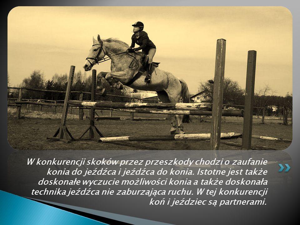 W konkurencji skoków przez przeszkody chodzi o zaufanie konia do jeźdźca i jeźdźca do konia.
