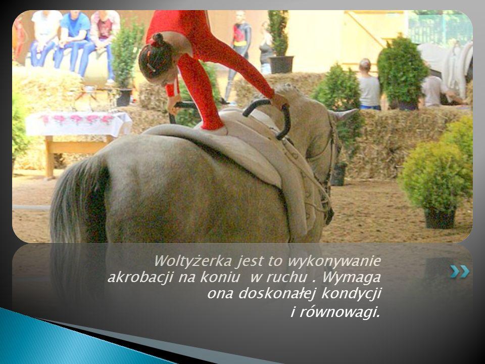 Woltyżerka jest to wykonywanie akrobacji na koniu w ruchu