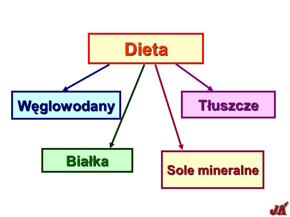 Dieta Węglowodany Tłuszcze Białka Sole mineralne