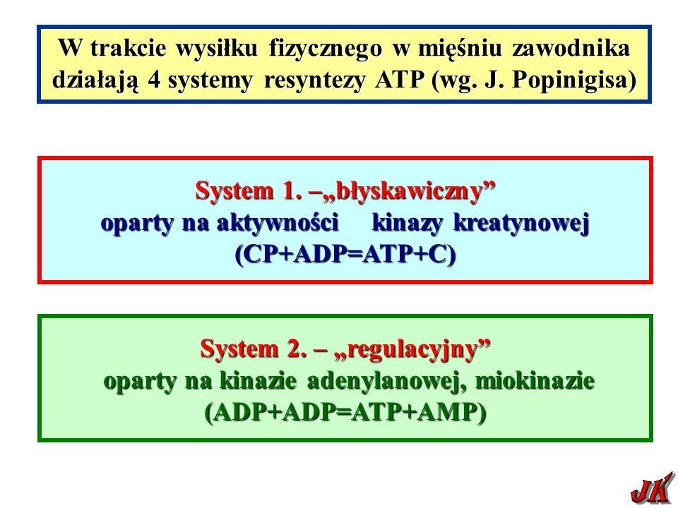 """System 1. –""""błyskawiczny"""