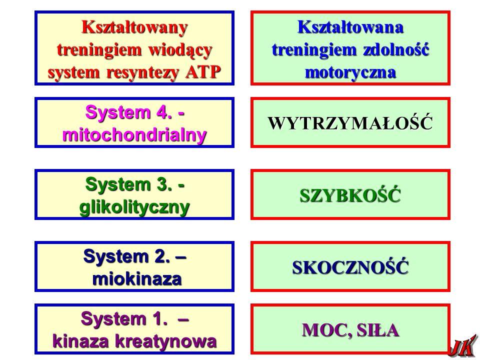 Kształtowany treningiem wiodący system resyntezy ATP