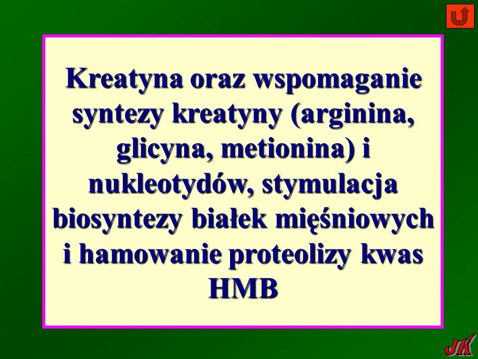 Kreatyna oraz wspomaganie syntezy kreatyny (arginina, glicyna, metionina) i nukleotydów, stymulacja biosyntezy białek mięśniowych i hamowanie proteolizy kwas HMB