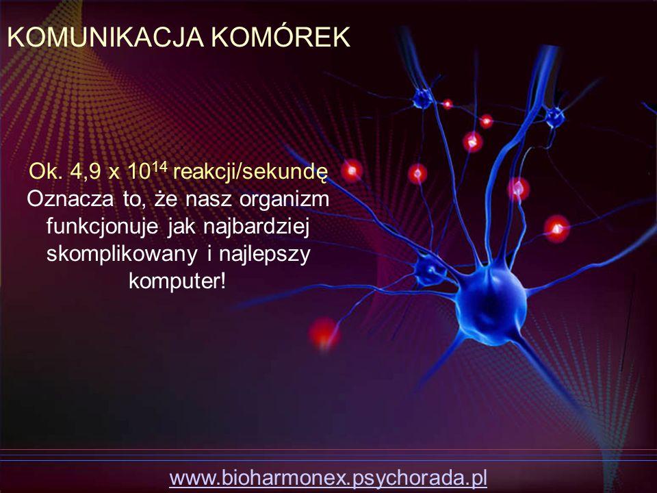 KOMUNIKACJA KOMÓREK Ok. 4,9 x 1014 reakcji/sekundę