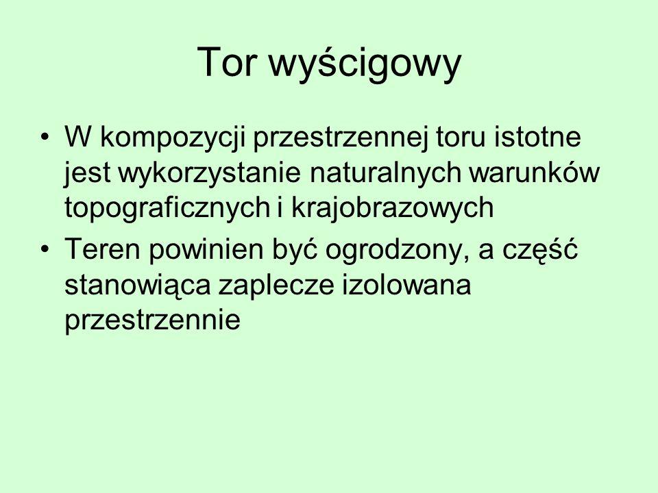Tor wyścigowy W kompozycji przestrzennej toru istotne jest wykorzystanie naturalnych warunków topograficznych i krajobrazowych.