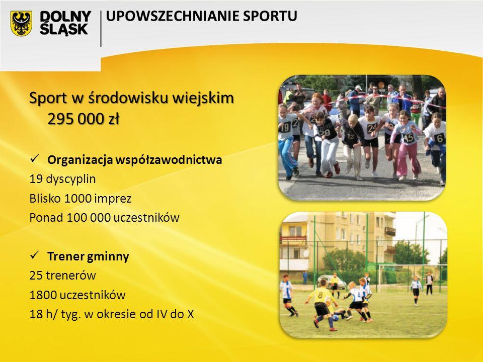 Sport w środowisku wiejskim 295 000 zł