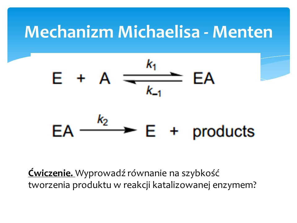 Mechanizm Michaelisa - Menten