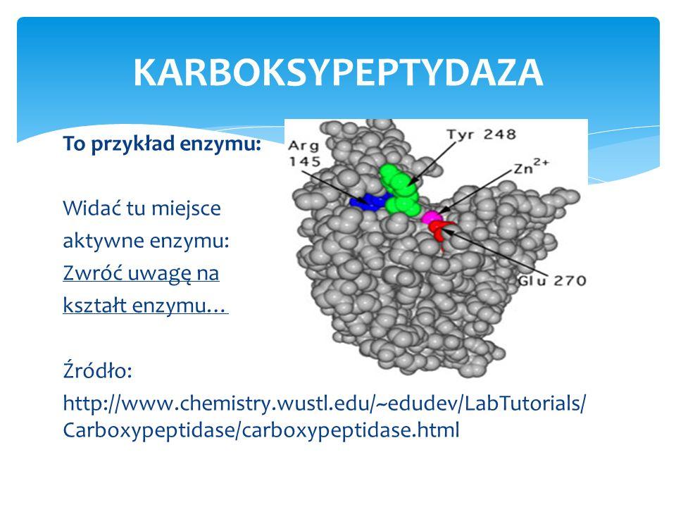 KARBOKSYPEPTYDAZA