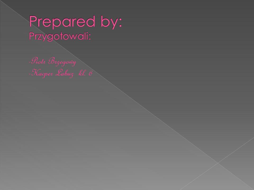 Prepared by: Przygotowali:
