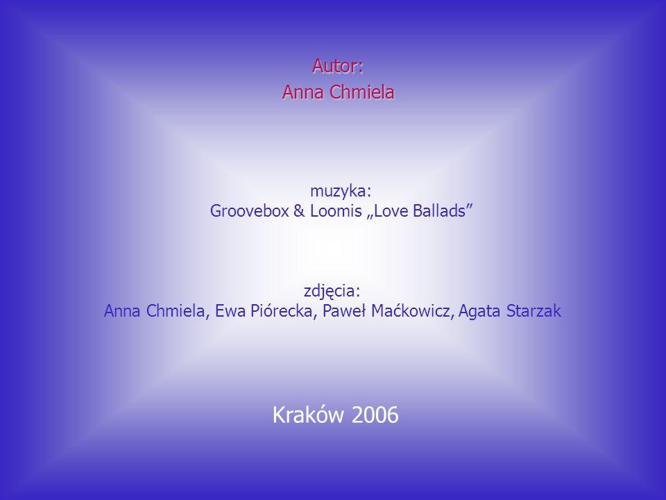 Kraków 2006 Autor: Anna Chmiela