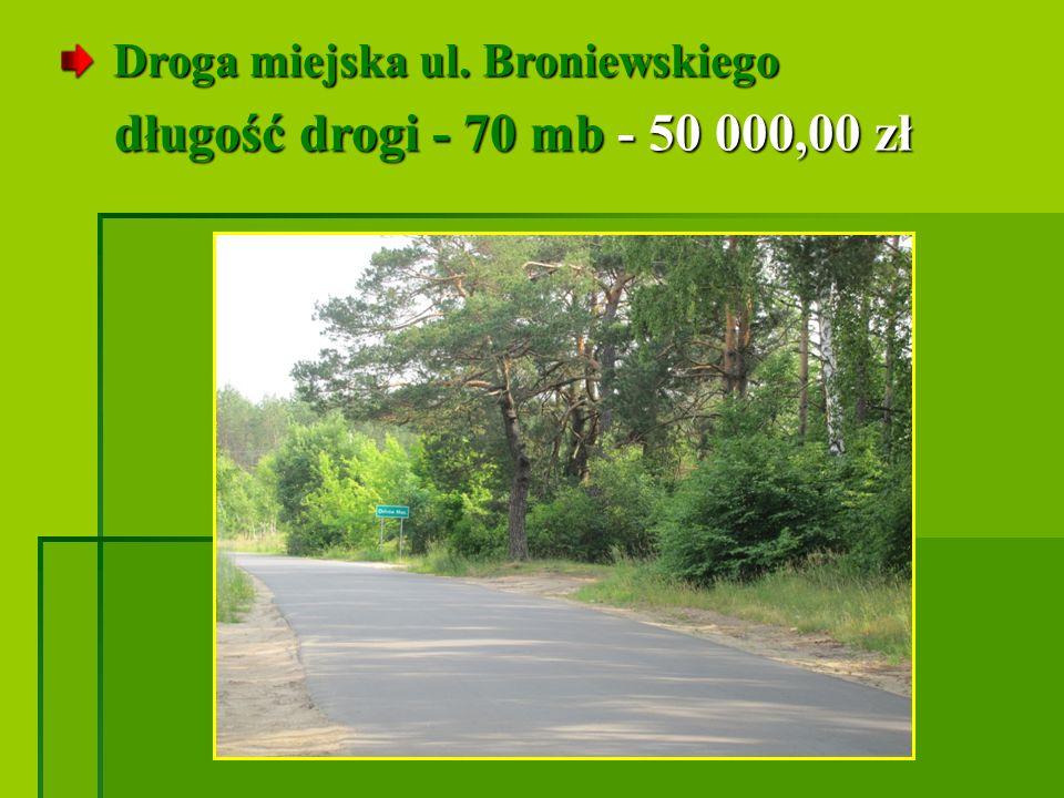Droga miejska ul. Broniewskiego