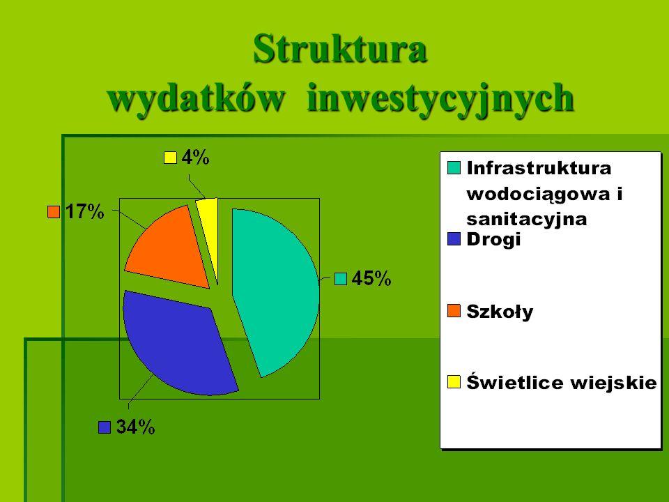 Struktura wydatków inwestycyjnych