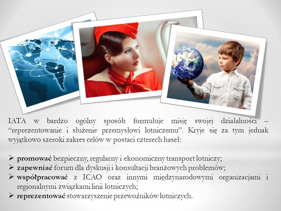 IATA w bardzo ogólny sposób formułuje misję swojej działalności – reprezentowanie i służenie przemysłowi lotniczemu . Kryje się za tym jednak wyjątkowo szeroki zakres celów w postaci czterech haseł:
