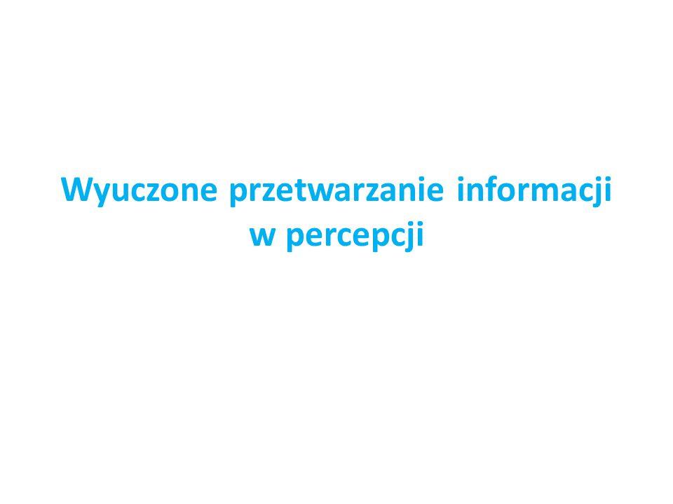 Wyuczone przetwarzanie informacji w percepcji