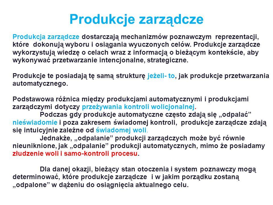 Produkcje zarządcze