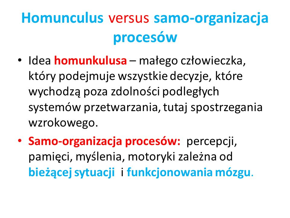Homunculus versus samo-organizacja procesów