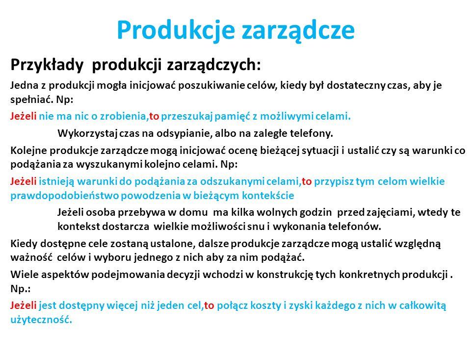 Produkcje zarządcze Przykłady produkcji zarządczych: