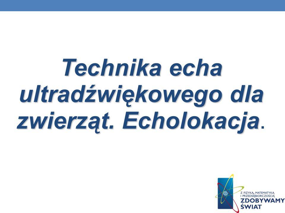 Technika echa ultradźwiękowego dla zwierząt. Echolokacja.