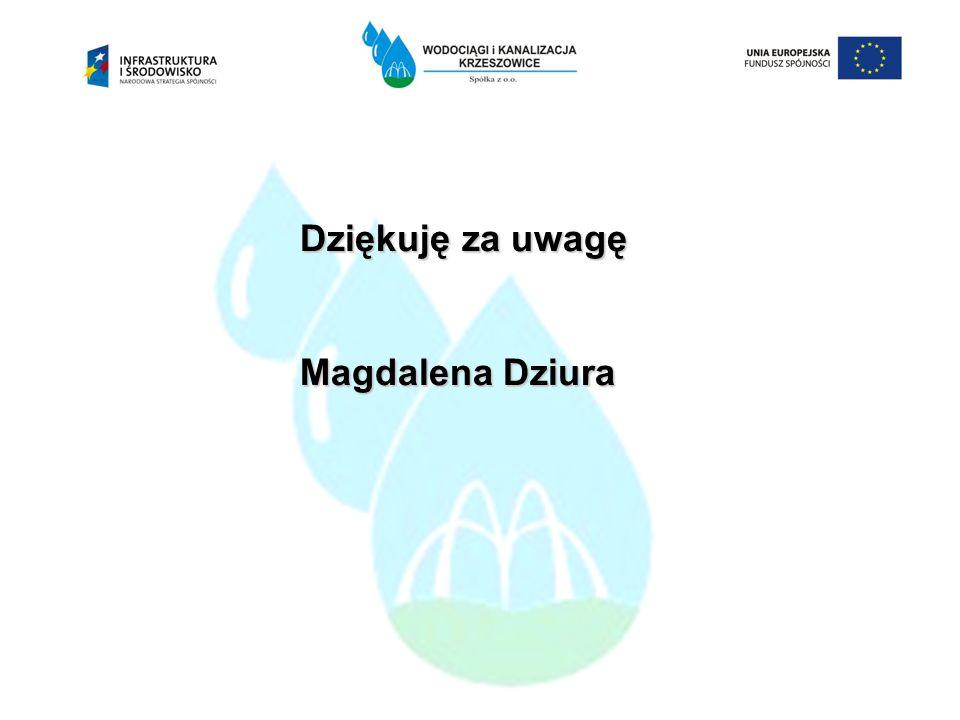 Dziękuję za uwagę Magdalena Dziura 14