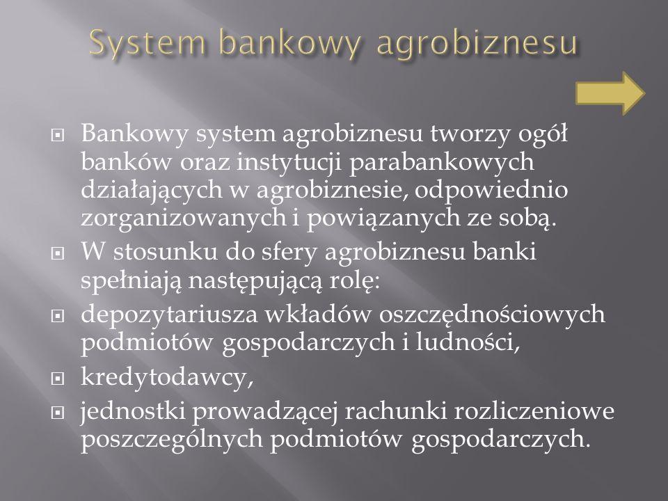 System bankowy agrobiznesu
