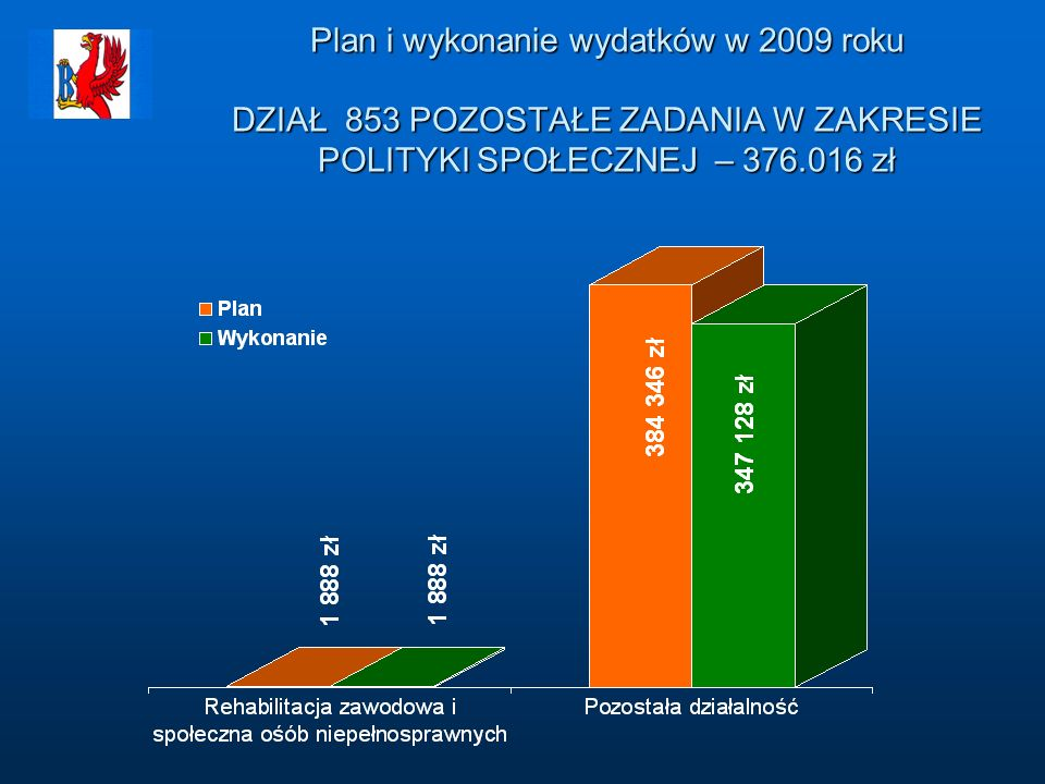 Plan i wykonanie wydatków w 2009 roku DZIAŁ 853 POZOSTAŁE ZADANIA W ZAKRESIE POLITYKI SPOŁECZNEJ – 376.016 zł